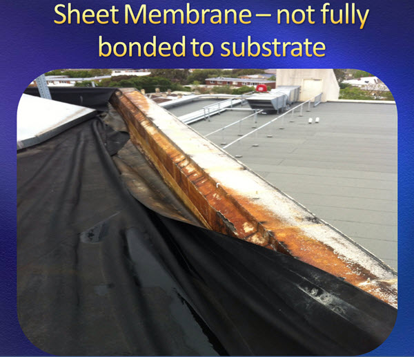 sheet water proof membrane